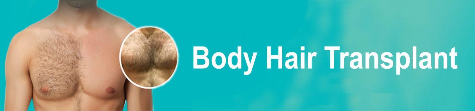 body h t